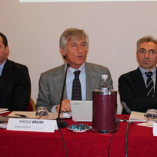 Conferenza-Ortofrutta-Italia-2012-cso-italy-10