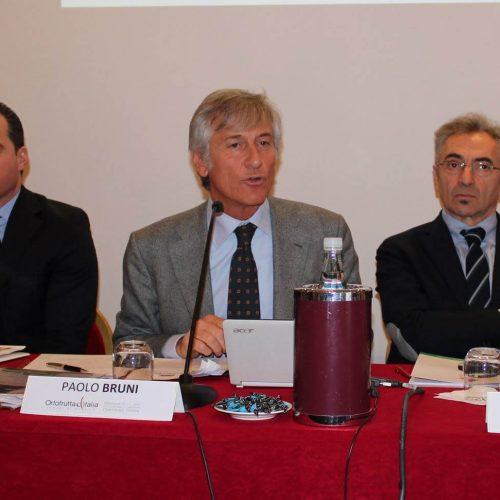 Conferenza-Ortofrutta-Italia-2012-cso-italy-11