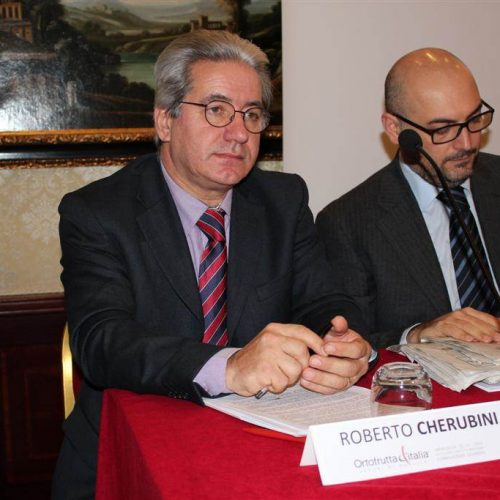 Conferenza-Ortofrutta-Italia-2012-cso-italy-13