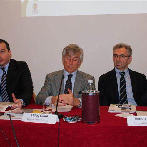Conferenza-Ortofrutta-Italia-2012-cso-italy-31
