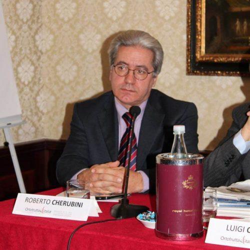 Conferenza-Ortofrutta-Italia-2012-cso-italy-52
