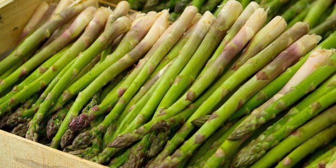 csoservizi-csoitaly-asparagi-raccolta-009