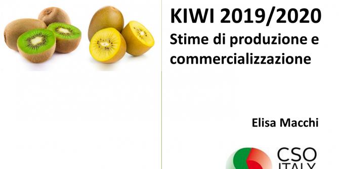 KIWI_CCIAA_2019_Elisa_Macchi_CSOItaly_Stime_di_produzione_commercializzazione